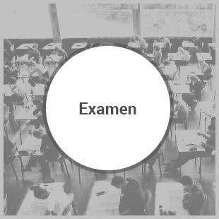 Havo A Examen
